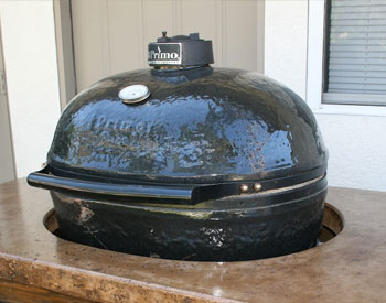 Primo Oval Large Barbecue